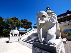 Yun Yang Temple