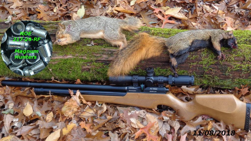 Budget 22 Hunting Pellet - Airguns & Guns Forum
