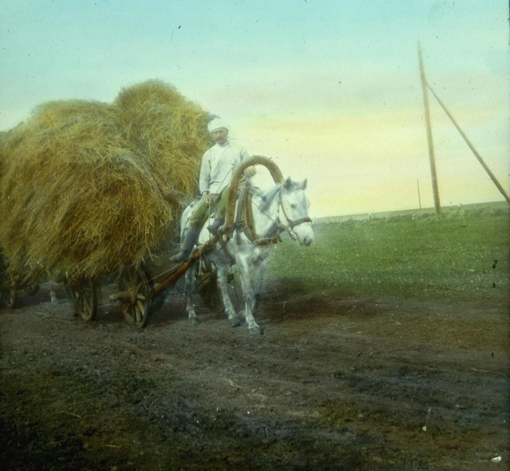 Крестьянин везет сено