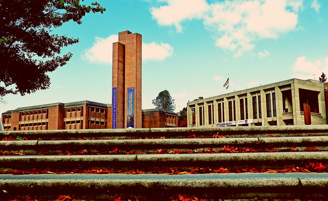 """Dawg Dash """"University of Washington"""""""
