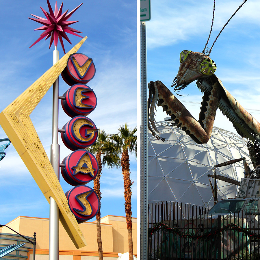 vegas-praying-mantis
