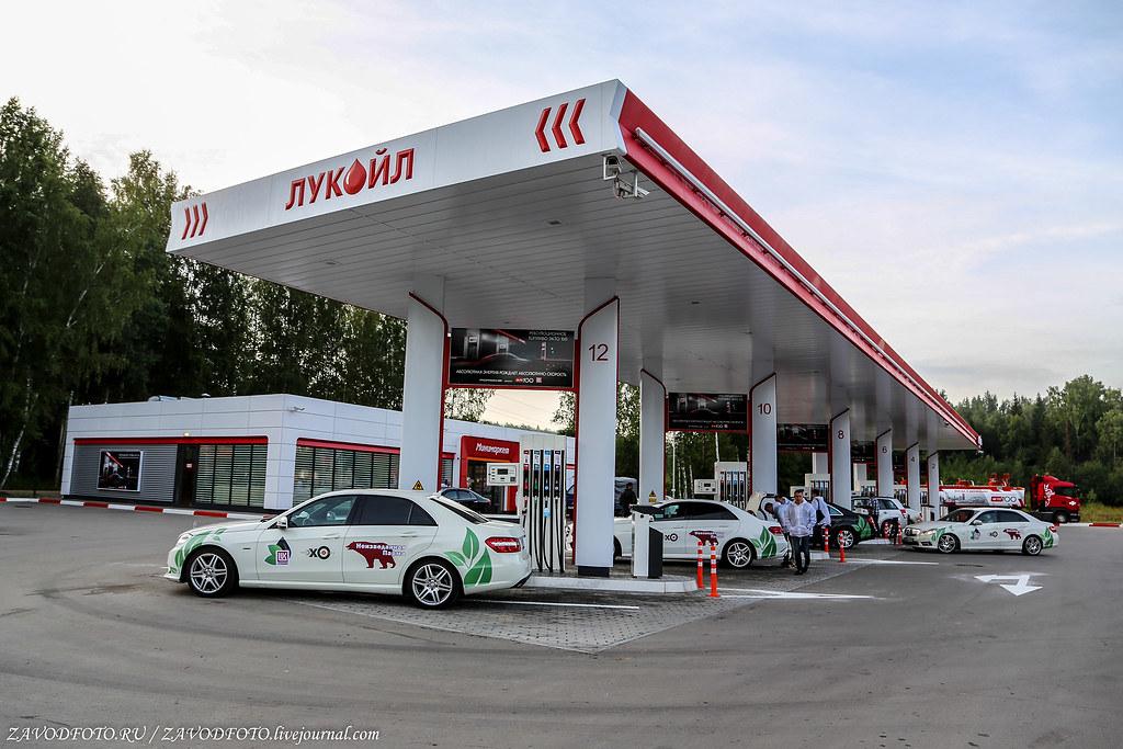 20 интересных фактов о бензине