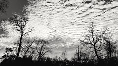 2019-01-06 Sky View II