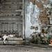 181114 - Back Alley