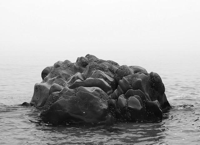 south hams devon blackpool sands unusual rock photograph black and white