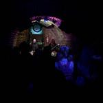 VELVETREE - Down Under Australian Pub, Vienna