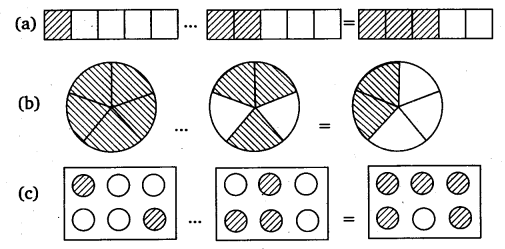NCERT Solutions for Class 6 Maths Chapter 7 Fractions 65