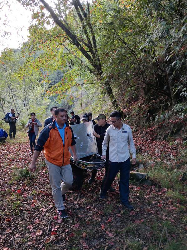 11月22日下午,東勢林區管理處鞍馬山工作站森林護管員以擔架及獨輪車護送黑熊返回森林。(照片提供:東勢林區管理處)