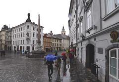 Ljubljana, Slovenia, November 2018 015