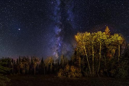 Autumn Nights