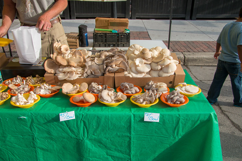 So many mushrooms at the Des Moines Farmer's Market