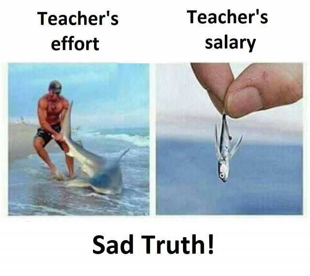 teachers-effort-teachers-salary-sad-truth-MOL7s