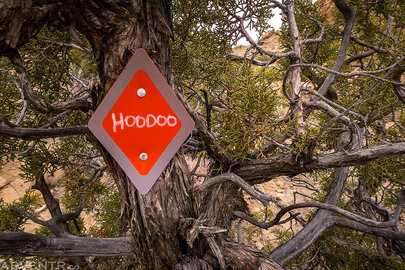 Hoodoo Tree