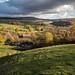 Derbyshire autumn