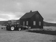 Farm life south coast of Iceland