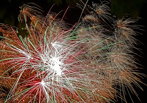 D20785  Firework Night