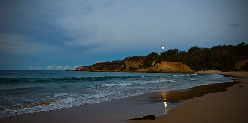begavalley sapphirecoast nsw farsouthcoast tathrabeach moon walks dusk