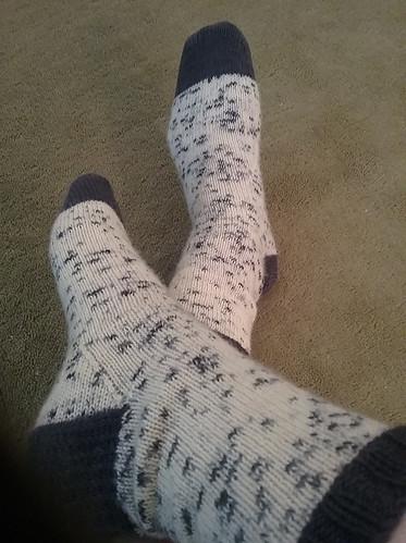 Carol's Dalmation Socks!