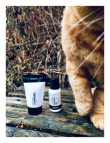 vegan skincare, the inkylist, and snoopervisor zigne, december 2018 -