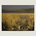 Canvas, acrylic, 100×80 cm. by Ilya Over