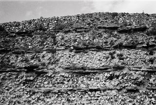 Roman wall, Silchester