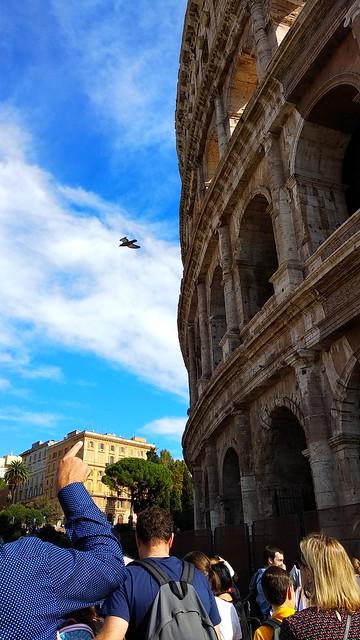 Rooma linnadžungel