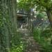 Hassenbrook (Path Under Railway)