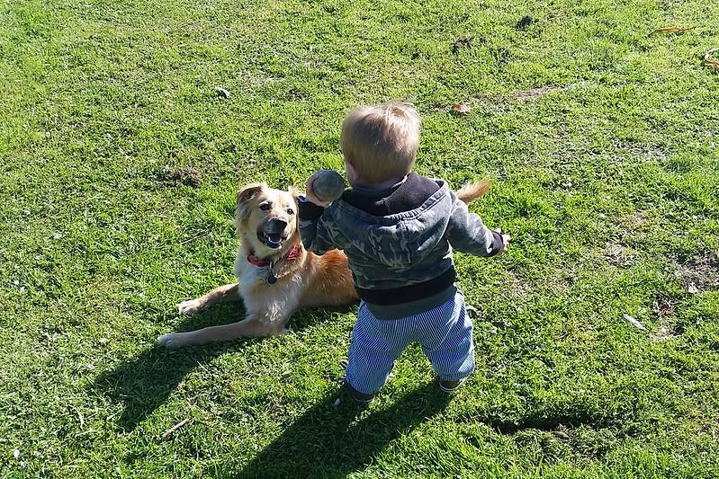 Dude and Doggo