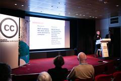 Hessel van Oorschot bij Publiek Domeindag 2019