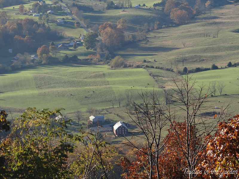 10-Shenandoah Valley