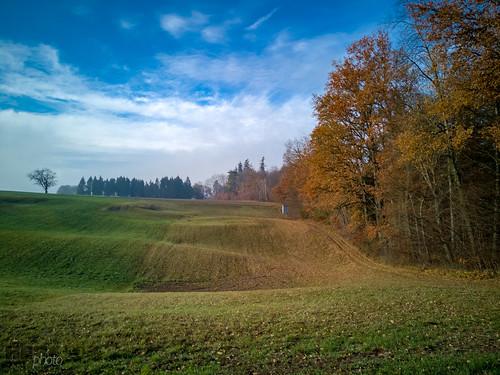 181125_Herbst_Nebel(14)
