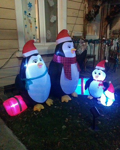 Holiday penguins of Dupont Street at night #toronto #dovercourtvillage #dupontstreet #christmas #holidays #penguin #night