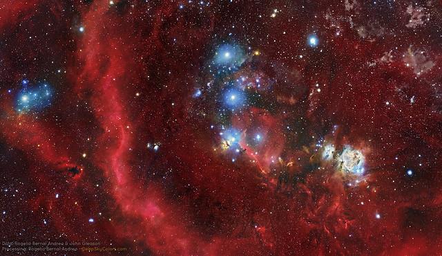 Fields of Orion