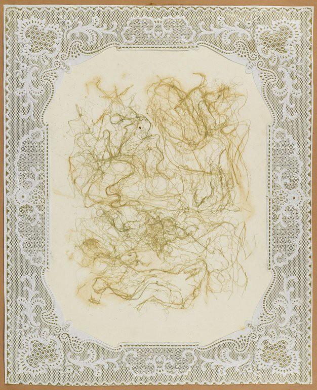 002-Album de algas marinas-1848- Brooklyn Museum Library
