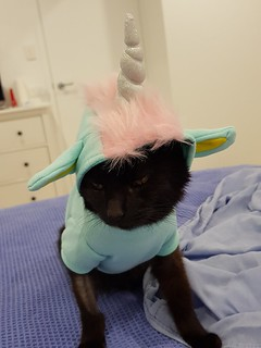 Dim Sim Unicorn