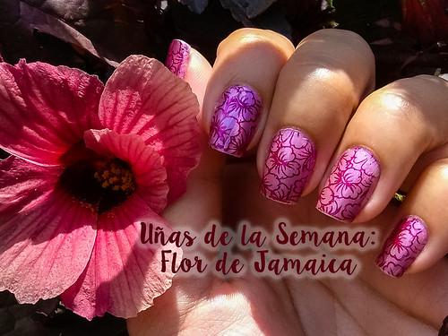Uñas de la Semana: Flor de Jamaica