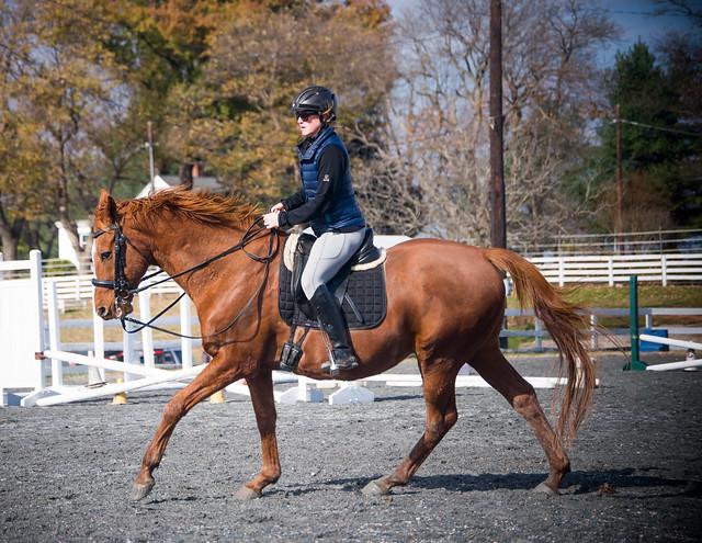 20181116 Austen's Ponies_28