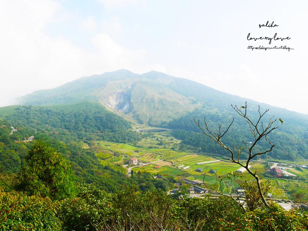 台北陽明山一日遊踏青景點推薦大屯自然公園 (4)