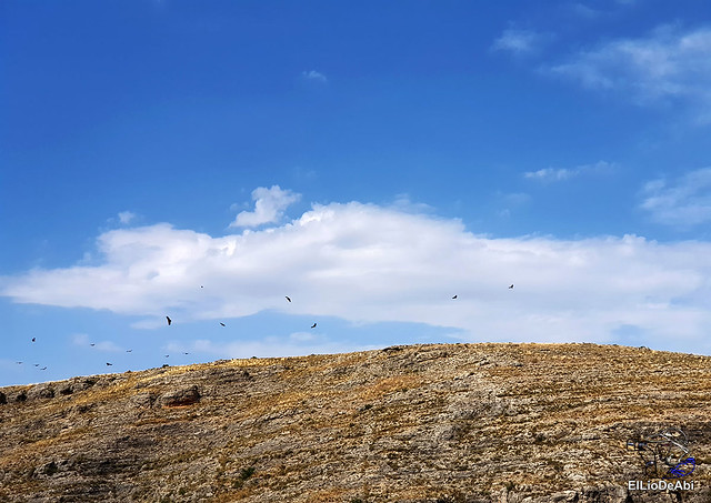 Berlanga de Duero, que ver en una tarde (10)