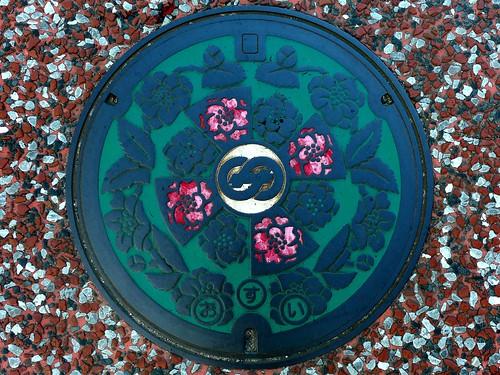 Saza Nagasaki, manhole cover (長崎県佐々町のマンホール)