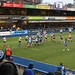 016-20181104_Cardiff Arms Park-Cardiff Blues vs Zebre Rugby Match-2nd half action-Cardiff Blues lineout in Zebre half of pitch