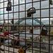 Newcastle is Locked