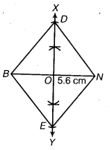 NCERT Solutions for Class 8 Maths Chapter 4 Practical Geometry 12