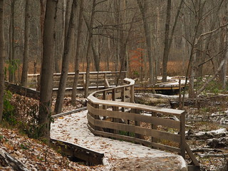 Winding Board Walk by Kathy Murphy.