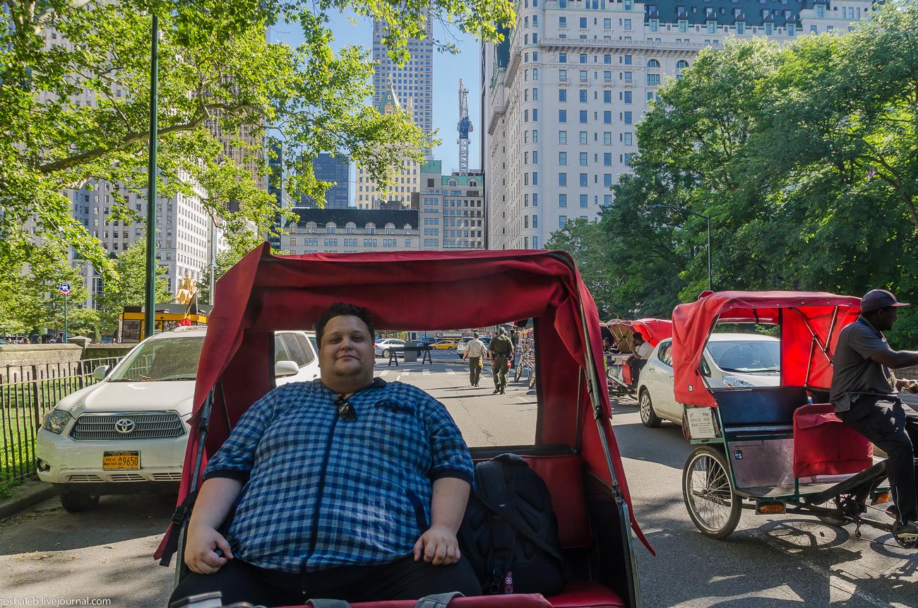 Нью-Йорк_Central Park_Times Square-1