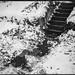 front steps, pathway, shoveled snow, leaves, Asheville, NC, Koni Omega Rapid 100, Wide Omegon 58mm f/5.6, Arista.Edu 200, Ilford Ilfosol 3 developer, 12.9.18 by steve aimone