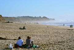 The Beach, Half-Moon Bay, California