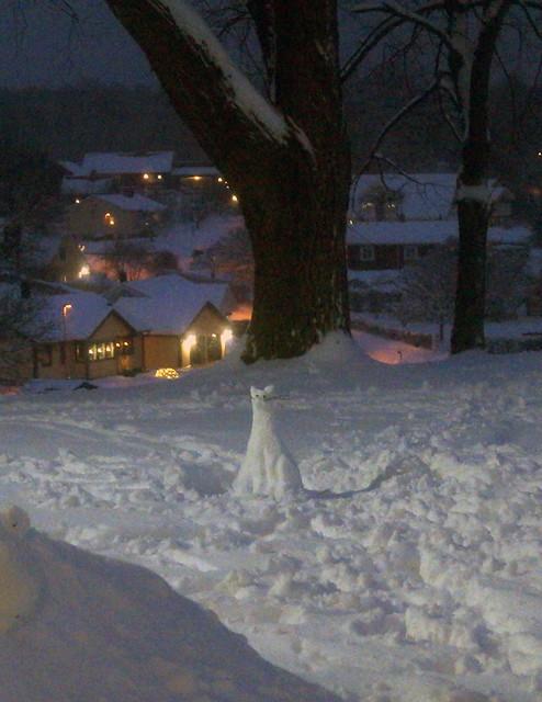 snowcatC05140