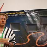 En el Seminario de Buenas Prácticas en áreas protegidas del bioma amazónico (Lima, 11 y 12 de septiembre de 2018)  se planteó una metodología innovadora de exposición basada en la técnica de analogías para generar un evento dinámico. La presentación de las 45 experiencias se realizó en 5 grupos de trabajo o talleres. De esa manera, utilizando un procedimiento diferente, se lograron espacios de intercambio y aprendizaje.   Cada experiencia, de forma paralela, debió realizar la analogía de un viaje por un río amazónico, en el cual navegaron por diversas estaciones en la que cada una respondió a una pregunta en particular sobre: los antecedentes que dieron origen a la experiencia, los actores que estuvieron involucrados en ella, las principales acciones que desarrollaron, así como los desafíos a los que se enfrentaron y los resultados obtenidos.  Posteriormente, los navegantes salieron de sus embarcaciones individuales y de forma conjunta, realizaron un análisis sobre el viaje realizado por todos.