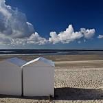 7. Oktoober 2013 - 12:02 - FRANCE  Somme estuary  Le Crotoy